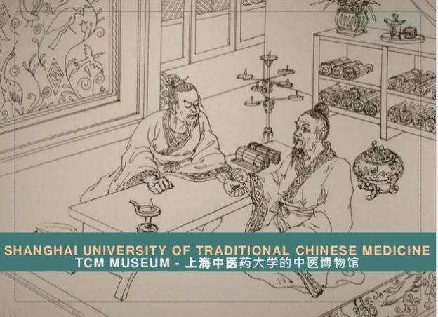 infos about shanghai university of traditional chinese medicine