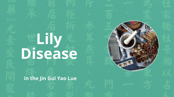 bai he lily disease