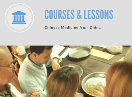 chinese medicine online courses from china