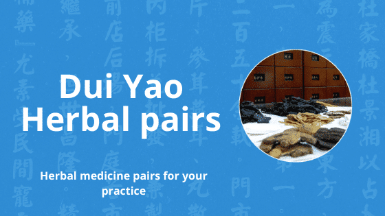 dui yao herbal pairs