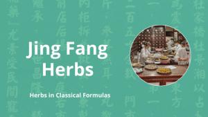 jing fang herbs