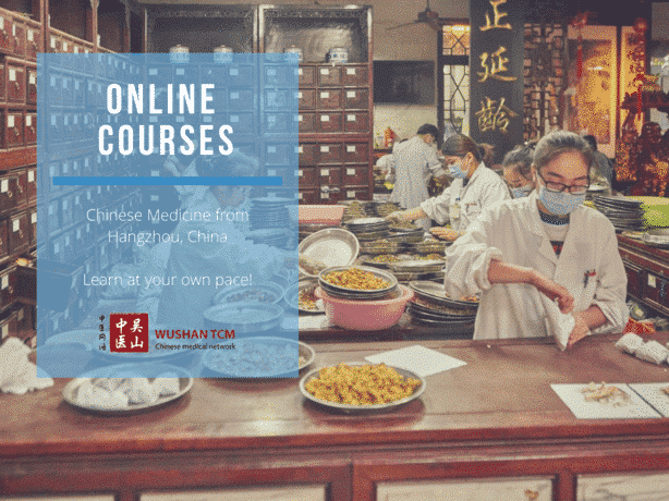 chinese medicine online courses