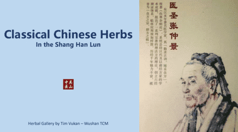 Classical-Chinese-Herbs-in-the-Shang-Han-Lun-1