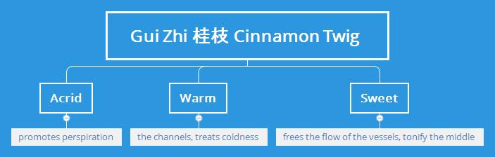 Gui Zhi Cinnamon Twig