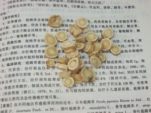 learn about jing fang herbs