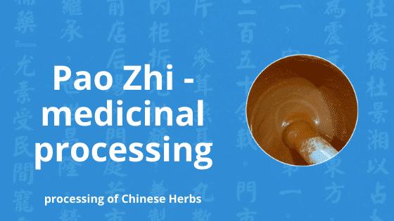 pao zhi medicinal processing