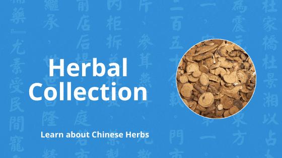 chinese herbal gallery