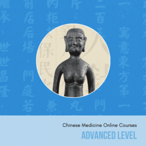 advanced chinese medicine online courses