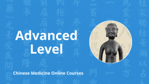 advanced level chinese medicine online courses