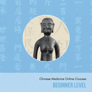 beginner chinese medicine online courses