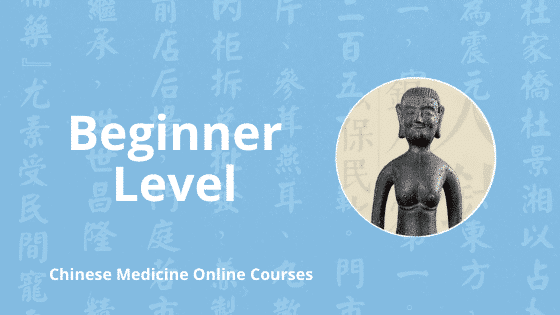 beginner level chinese medicine online courses