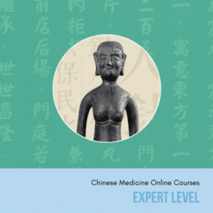 expert chinese medicine online courses