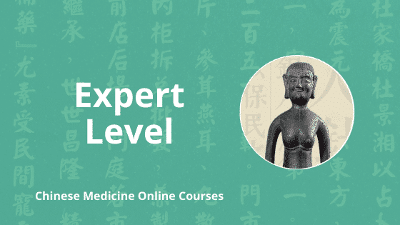 expert level chinese medicine online courses