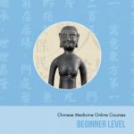 Group logo of Beginner Level